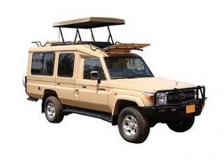 Safari cruiser $120